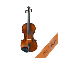 Gliga III Violin Outfit with Setup